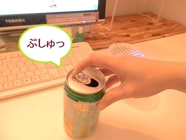 ジンジャーエール3.JPG