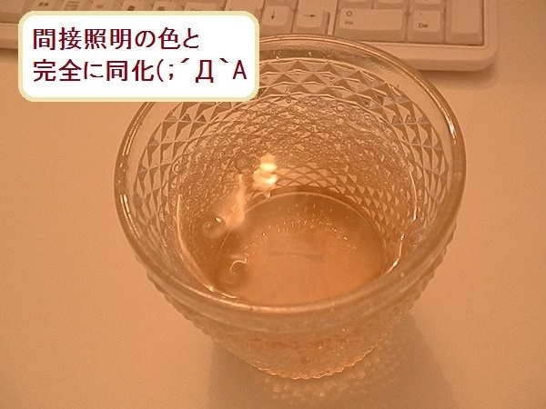 ジンジャーエール5.JPG