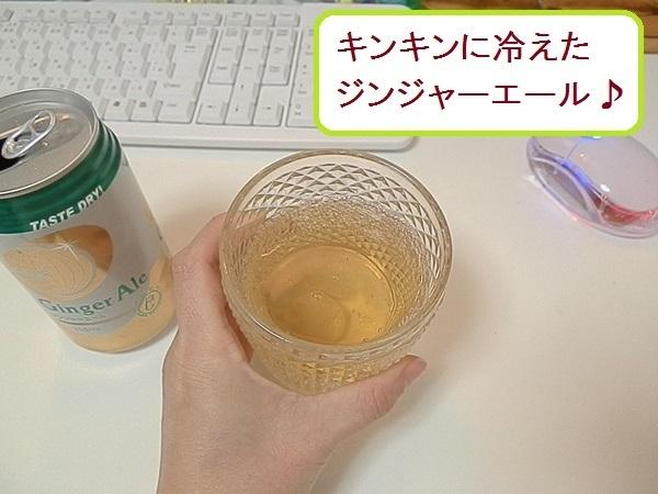 ジンジャーエール8.JPG